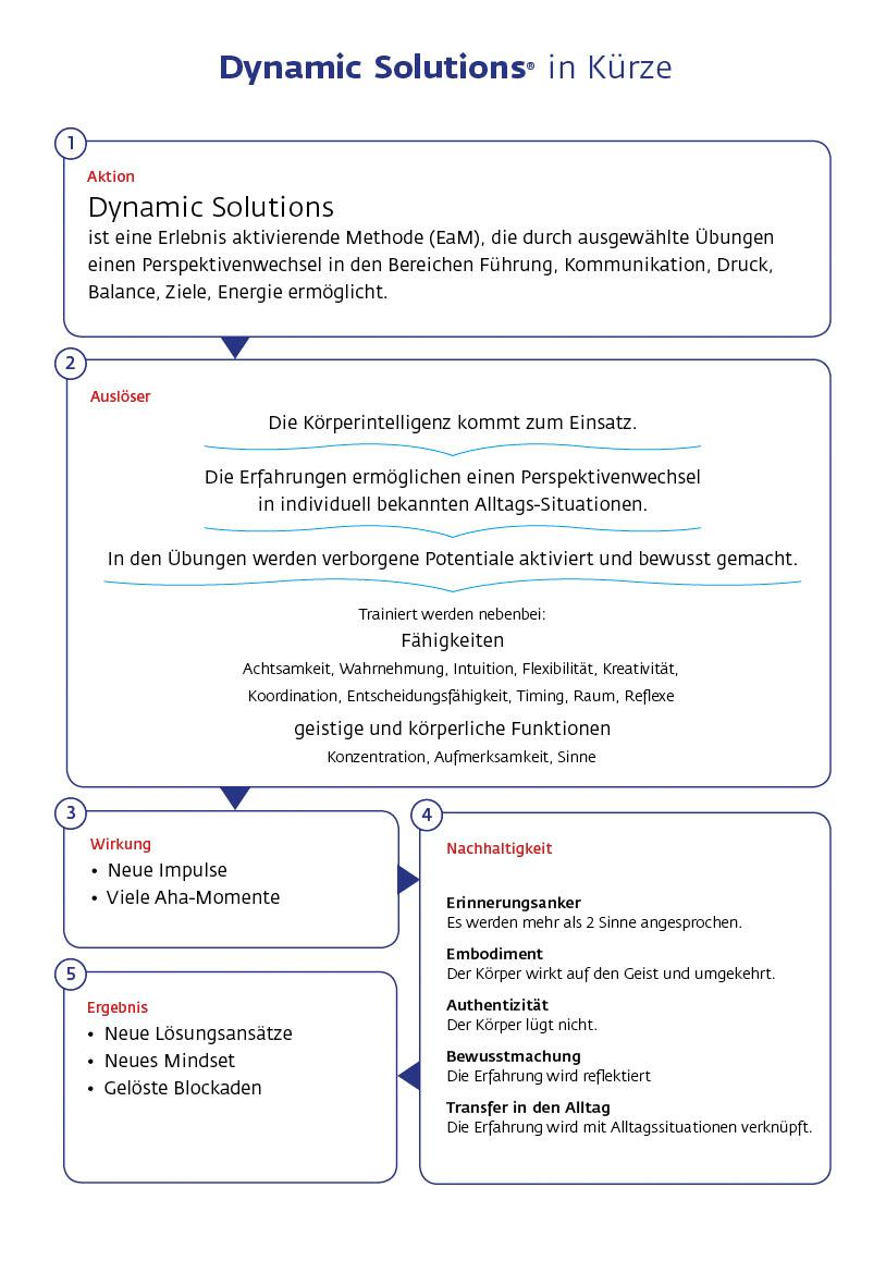 Dynamic Solutions kurz erklärt